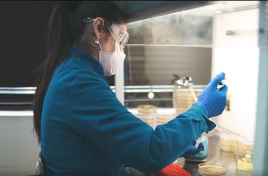 Académica de la Universidad de Talca destacó importancia de la dieta para la salud bucal